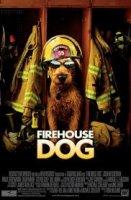 Firehouse Dog / Пожарникарско куче (2007)