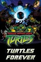 TURTLES FOREVER / КОСТЕНУРКИ ЗАВИНАГИ (2009)
