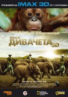 IMAX - Born to Be Wild / Дивачета (2011)