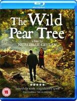 Ahlat Agaci / Дивата круша / The Wild Pear Tree (2018)